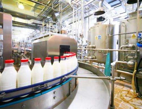 چرا شیر کام روز کیفیت و طعم بی نظیری دارد؟!